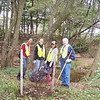 10.15.10 Arbutus Elementary School--Tree Maintenance Along Herbert Run : 