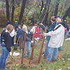 11.15.08 Tree Planting-Stream Cleanup-Arbutus Middle School : 