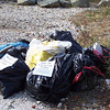 11.17.10 Patapsco River Watershed Cleanup off of Hammonds Ferry Road : 