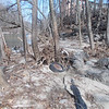 1.24.13 River Section Check Off Oella Ave. in Oella Near Old Dickey Mill : On Monday, February 28, 2013, PHG Stream Team Members visited a troublesome area reported to us by new stream watcher, Andrea Miralia of historic Oella who lives near the section of the Patapsco River close to the Dickey Mill.  After the past few tropical storms and heavy rains that came through the area, a large amount of debris has washed up along the banks of this area, as well as some tires embedded near the riverbanks.  This area is targeted for a future TGIF cleanup.  Thanks to Andrew for reporting this and keeping an eye on this section of the Patapsco River!!!!