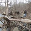 2.19.12 Stream Watcher Jepsen Family's Report on Patapsco River - Hollifield Area of Patapsco State Park : on February 19, 2012, PHG's wonderful stream watcher Jepsen family (Anne, Esben, Rikke and Kim) conducted their first stream watcher recon of 2012 along a section of the Patapsco River in the Hollifield Area of Patapsco State Park!  Special notes on their report include:    Biggest problem you see in your section:  Erosion on both banks and this time much more on the left bank which can be seen from the pictures. There are still plenty of logs and branches piled up onto the left bank further down the stream, but they don't seem to move further.  Potential areas for buffer enhancement, stream restoration, retrofit, or educational campaign:  Something should definitely be done to stop erosion but probably first when building of the bridge has been completed.   Would you like to see the FPVHG perform any project work here?  No.  General comments:  Just like in October, we barely saw any evidence of wildlife in or around the stream probably because of the season. There was even more water that in October despite it had been a long while since we have had rain.  Great job to our wonderful stream watchers!
