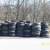 3.17.11 Watershed Cleanup off Hammonds Ferry Rd. : 