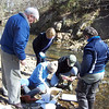 3.28.11 Water Quality Testing at Bascum Creek in Elkridge : 
