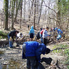 3.29.08 Sawmill Branch Cleanup-Catonsville : 