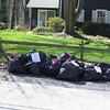 4.4.09 Sawmill Branch-Dutton Ave. Cleanup : 