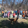 4.7.13 Hudson Branch Cleanup : The Patapsco Heritage Greenway partnered with the Ellicott City Flood Solutions Group, Center for Watershed Protection and other neighbors and PHG friends to clean up trash and woody debris along a section of the Hudson Branch, flowing from Ellicott Mills Drive down to the West End Shop.  Leading this group of 57 volunteers was our PHG stream captain team members Betsy McMillion, Tim Titus, Jeff Klein, Pete McCallum, Darren Lloyd and Drew Henderson.  ECFS Team leaders include:  Michele Bickley, Gayle arlene Killen, Frank Mello, Kate St. John, Aaron Ross, Wendy McCord, Melane Durantaye-Maier, Frank Durantaye and Nathan Sowers.  A total of 57 helpers came out to help remove an amazing 2,170 pounds of trash and debris from this stream section in an effort to remove trash and reduce future damming along this area during storms. They removed the usual type of stream trash normally found including plastic bottles, food wrappers, cans and glass beer and liquor bottles. Some of the more interesting items found included: 2 umbrellas, lots of broken glass pieces, big and small pieces of scrap metal, a car battery, 2 bicycle tires, car tires, a truck bed, weed wackers, a light from a truck, a container for oil, 4 unopened bottles of beer, a watering can, a tablecloth, lots of plastic Dixie cups with dirt in them (plant startings?), a spoon, a Minute Maid plastic bottle, a historic bottle over 100 years old, a grill with a mouse nest living in it, a softball, a baseball, a tire rim, a tork converter, a brake drum, rubber stuff from inside a football, a bicycle with training wheels, a wire rack, a kiddie pool, a blanket, a foam cushion, netting, a metal shelf, a horseshoe, metal fencing, broken garden tool pieces, plastic piping, a plastic lawn chair, metal cans, a metal gate, carpet pieces and an old drum!  Nature spotting included: Mallard ducks, a deer leg and lots of birds in the trees!!!  The neighbors will let us know if they hear the little frogs peeping at night....PEEP PEEP PEEP!!!  Many thanks to all of our wonderful volunteers who came out to help on Sunday morning who were responsible for doing such a great job cleaning up this portion of the Patapsco Watershed!
