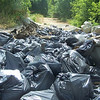 6.25.10 Patapsco River Cleanup off Hammonds Ferry Rd : 
