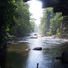 6.7.08 Patapsco River near Wilkins Rogers Flour Plant : 