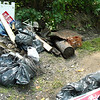 8.14.10 Patapsco River Cleanup Along River Rd. in Catonsville : 