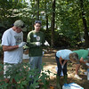 "9.8.12 ""Creek Scene Investigation"" Workshop in Bascom Creek in Elkridge : The Patapsco Heritage Greenway sponsored its first CSI - Creek Scene Investigation Workshop on Saturday, September 8, 2012 along Shallow Run (also known as Bascom Creek) in Elkridge, Maryland.  This stream is part of the Deep Run watershed area located on Howard County open space area.  Participants conducted 5 simple chemistry tests to determine water quality -- ph, temperature, nitrates, phosphates and ecoli.  Also participants discovered the diverse macroinvertebrates they found in the stream.  This workshop was to encourage participants to discover stream life and understand the types of tests taken to determine water quality, as well as try to determiine the causes of any pollution.  Special thanks to PHG member Ann Coren for leading the chemistry part of this workshop, and Jeff Klein, PHG's expert on macroinvertebrate identification!  Special thanks to PHG member Ann Coren for leading the chemistry part of this workshop, and Jeff Klein, PHG's expert on macroinvertebrate identification! Also special thanks to our other CSI Captain Team members -- Pete McCallum, Pete Block and Betsy McMillion who helped make this workshop a big success!"