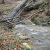"October 2012 Breezewood Stream Watch Report : John Cookson, one of our wonderful stream watchers, regularly monitors two sections of streams!  One of them is a section of a stream known as Breezewood Stream in Woodstock in Howard County.  According to his most recent report, this is John's findings: ""Stream is in good conditiion.   The stream crosses one pipeline.  For a stream map please see: